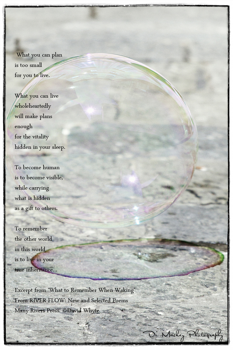 David Whyte and the Bubble.jpg