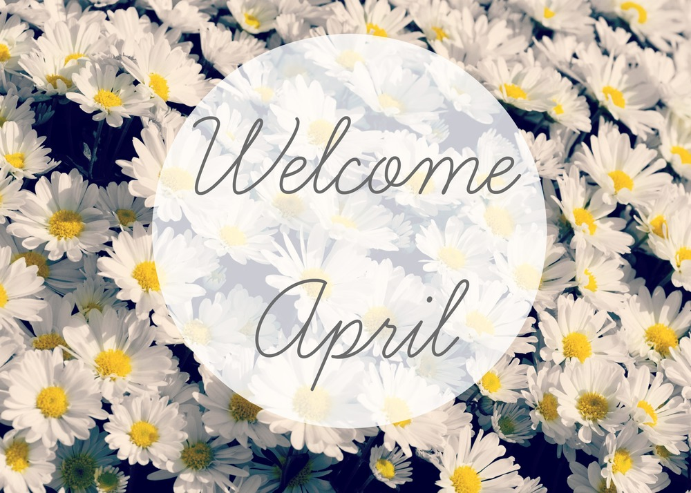 Welcome April Blogger Goals Holly Reed blog