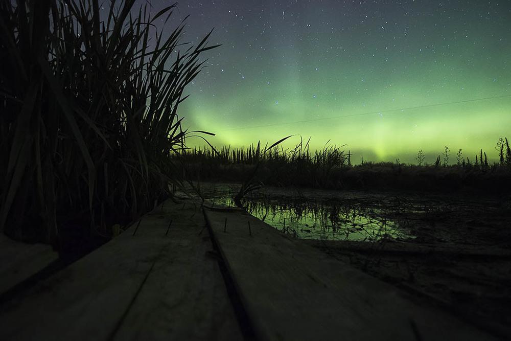 Saskatchewan_Nightlife_Aurora_003.jpg