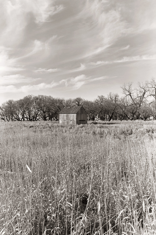 421 [F] Canon Elan IIe - Kodak Technical Pan__024.jpg