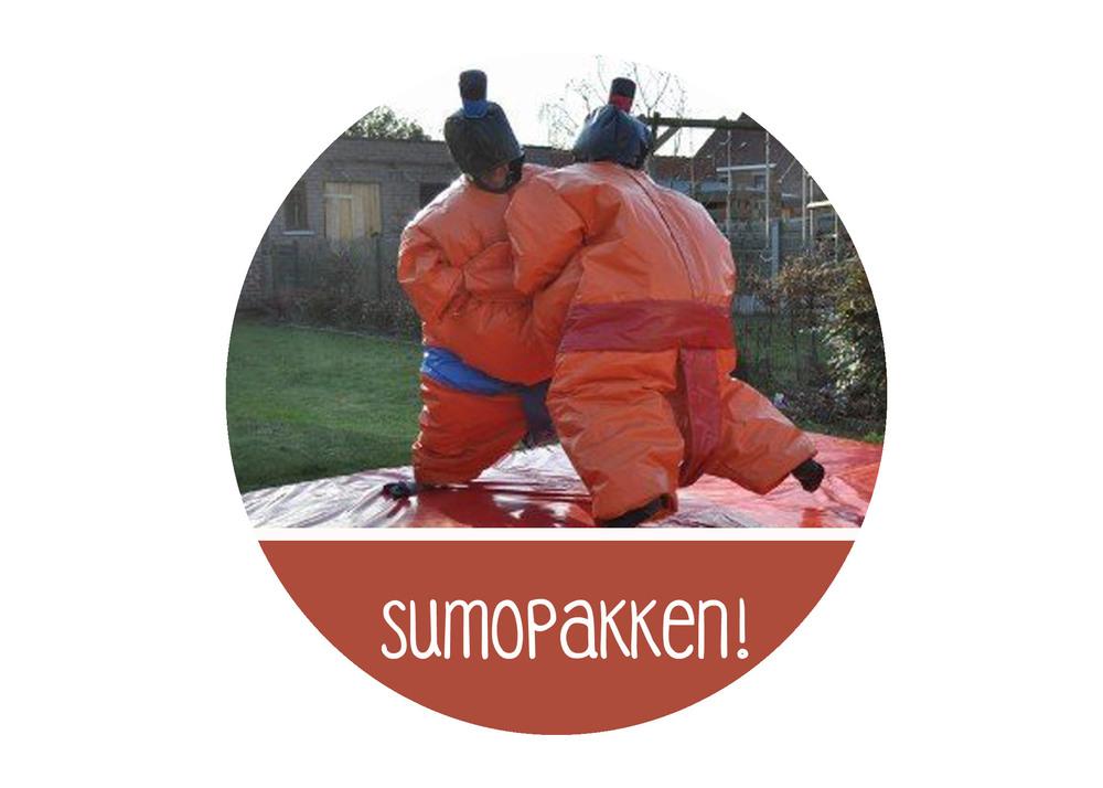 sumopakken sumopak huur xl game huren Antwerpen