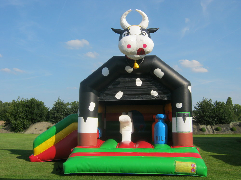 springkasteel koe Antwerpen Brasschaat Schilde huren