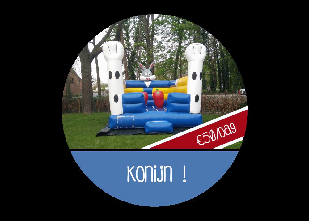 Konijnensprong springkussen huren Mechelen Schilde Borgerhout Mortsel Wijnegem Schilde Brasschaat  's gravenwezel