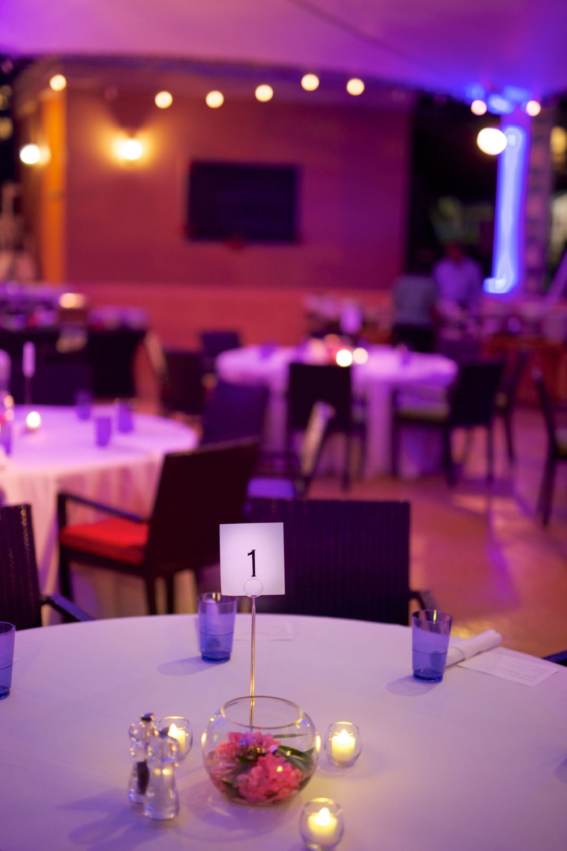 Le Cape Weddings - The Ritz Carlton Saint Thomas VA Wedding - Hesam and Mahsa  349.jpg