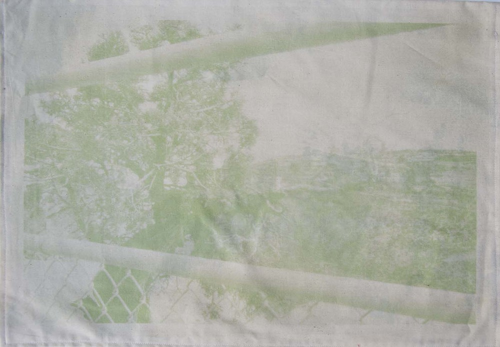 Spinach anthotypes on material