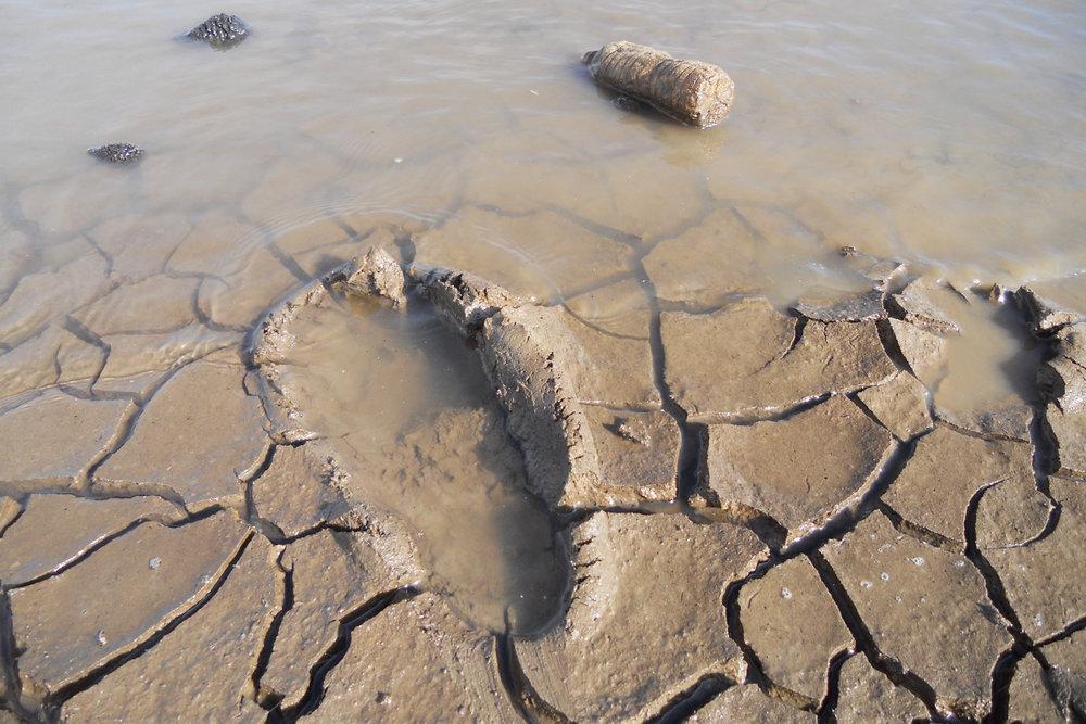footprint_DSCN2903.jpg