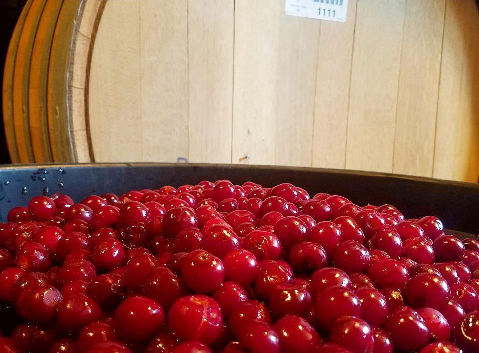 CYGNUS: Cherry (Blend B)