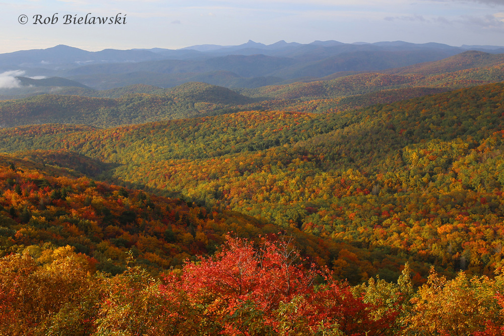 I spent the weekend traveling the Blue Ridge Parkway of North Carolina to see the fall foliage, this one was taken from Grandfather Mountain near Blowing Rock, NC.