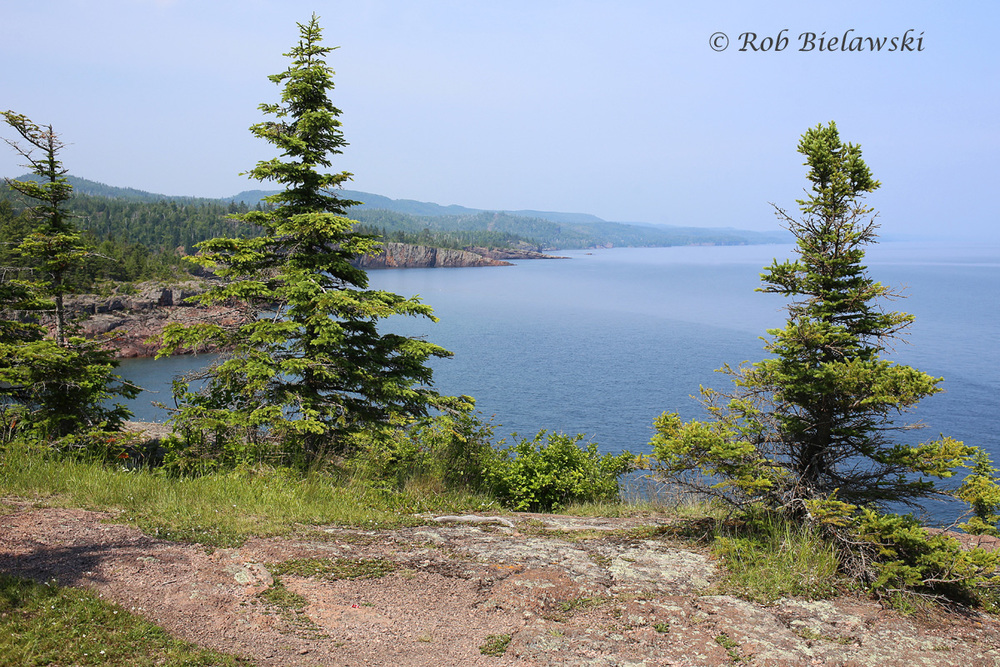 The view from Shovel Point northeast along the shoreline of Lake Superior!