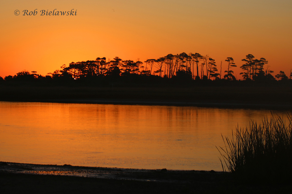 SUNRISE JUST BEFORE 7 AM VIEWED FROM THE BOAT RAMP AT THE END OF RAMP ROAD IN THE EASTERN SHORE OF VIRGINIA NATIONAL WILDLIFE REFUGE!
