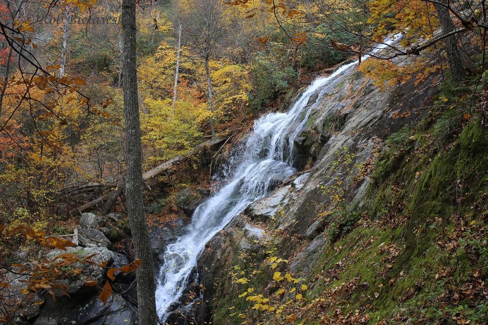 The lower portion of Crabtree Falls set against the fall foliage of the Blue Ridge!