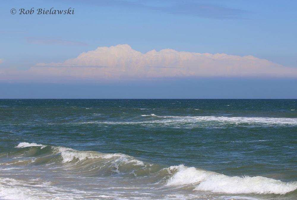 2). Ocean view