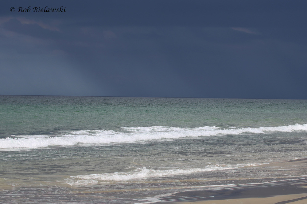 Storm over the Atlantic / 29 Jul 2016 / Back Bay NWR