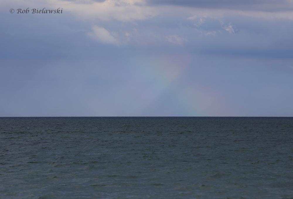 Rainbow over the Atlantic / 29 Jul 2016 / Back Bay NWR