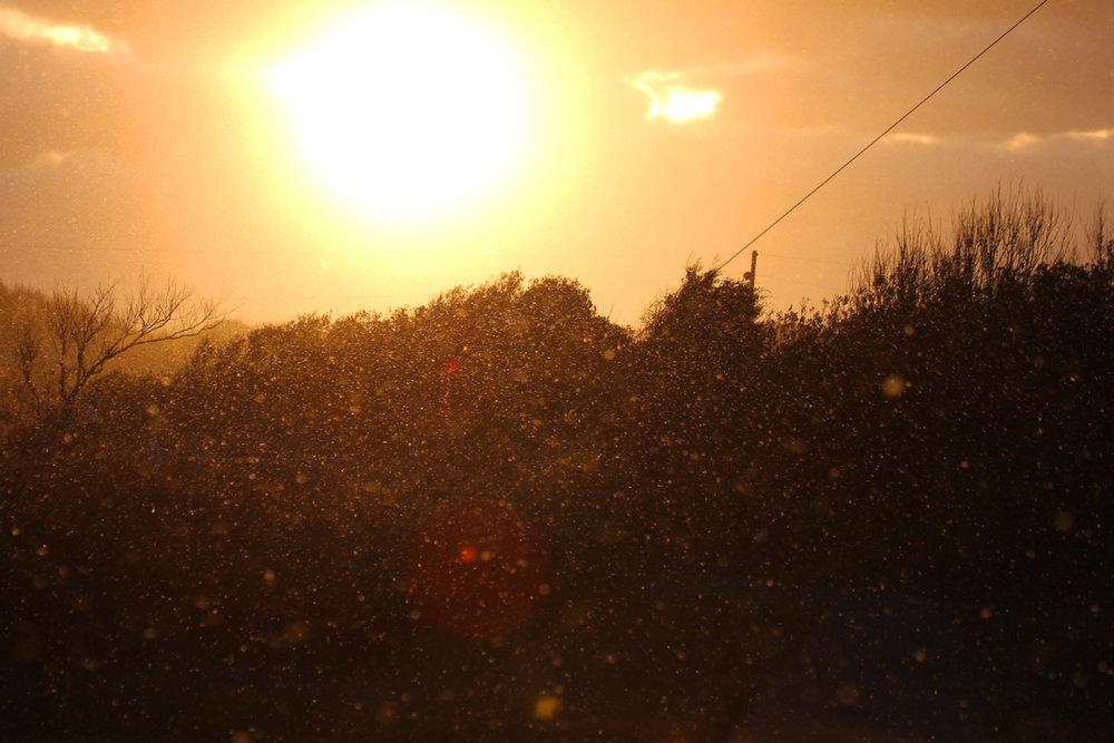 Sunrise / 1 Jan / Back Bay NWR