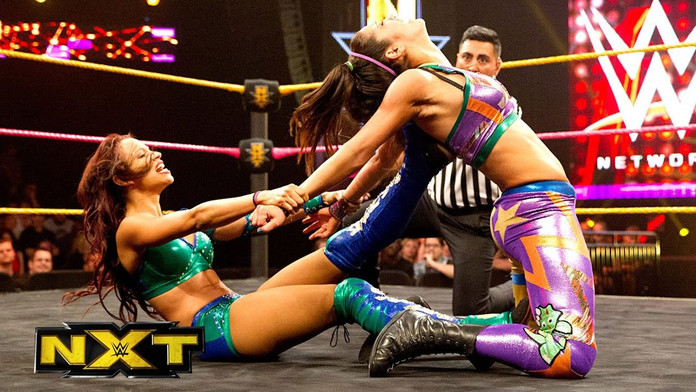 In the tradition of Jake Roberts, Bret Hart, Steve Austin, and Mick Foley (to name a few) everything Sasha Banks and Bayley do in a match has meaning and exists within the confines of wrestling reality.