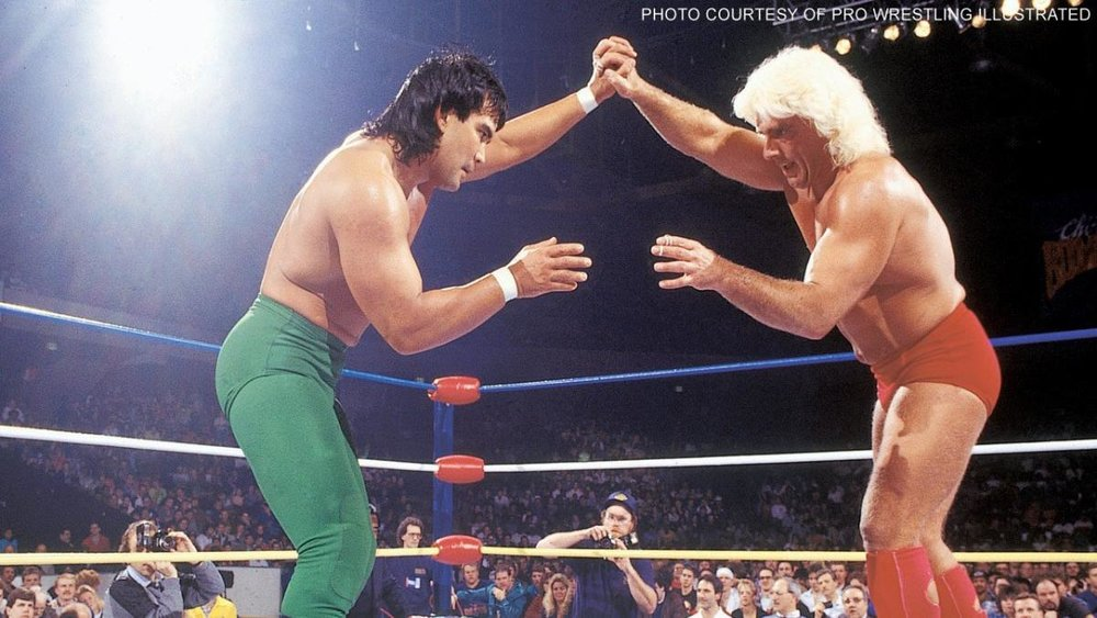 "Ricky ""The Dragon"" Steamboat (left) vs ""The Nature Boy"" Ric Flair (right)"
