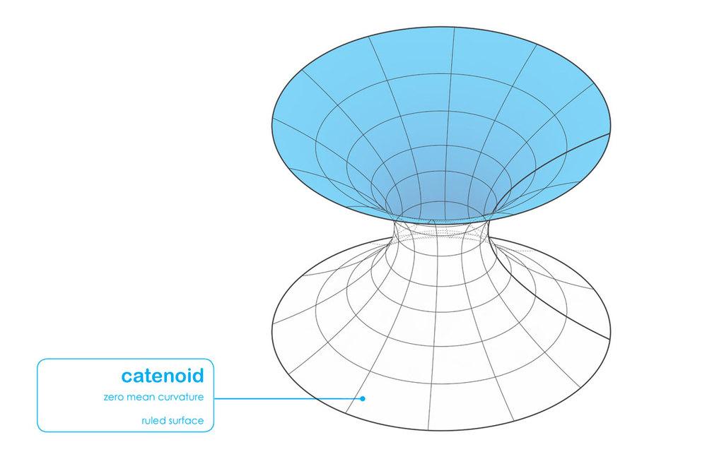 catenoid.jpg