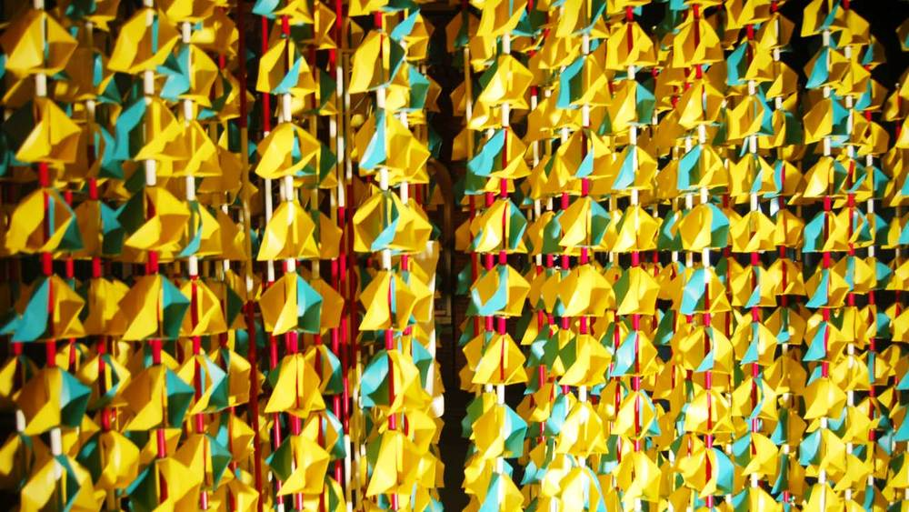 TW_Closeup4.jpg