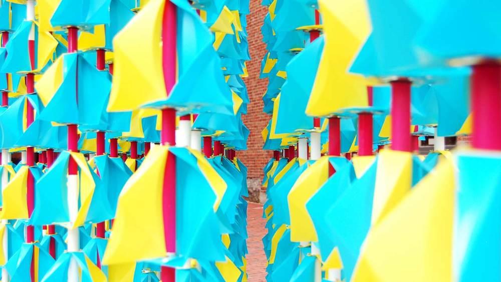 TW_Closeup5.jpg