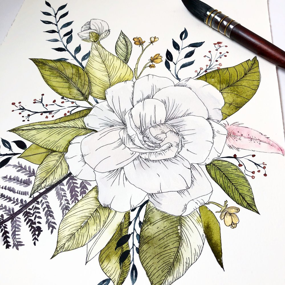 illustrated-gardenia-watercolor-ink.jpg