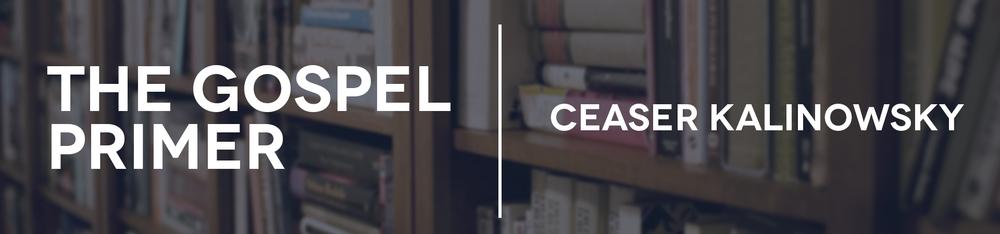 CG Core Curriculum Book-The Gospel Primer.jpg