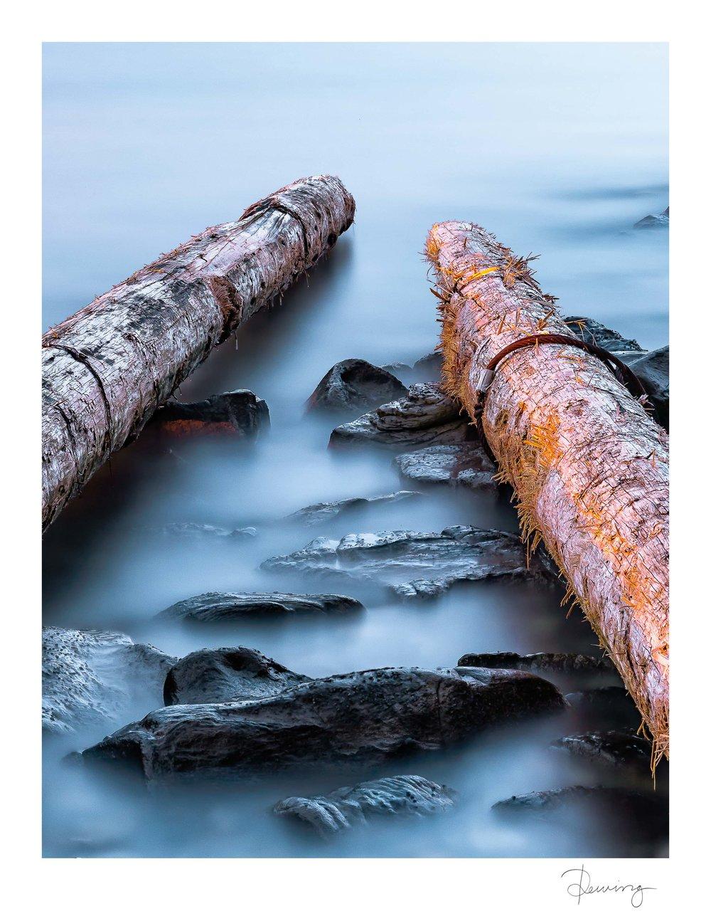 WHALEBONE - Whalebone, Gabriola Island 2017.©Quinton Dewing