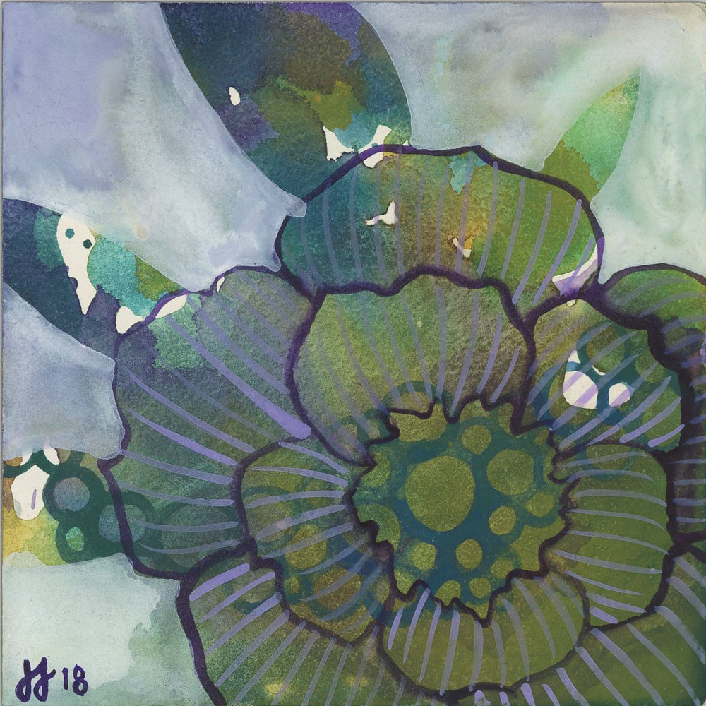 anemone #2