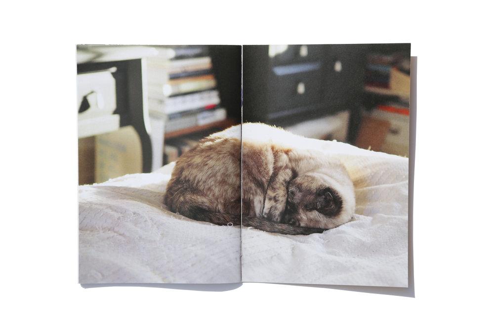 page 34 et 35.jpg