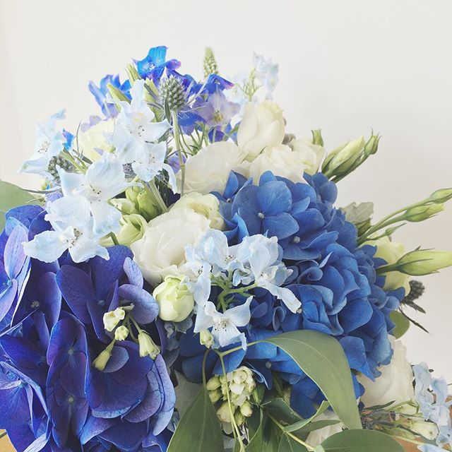 When 1 blue hydrangea isn't enough.