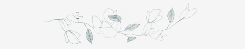 amalfi-coast-film-wedding-photographer-lace-luce-wild-vines-hand-drawn-sketch-jasmin-branch-home.png
