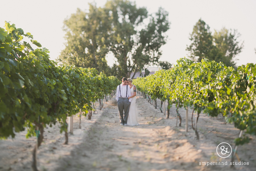 Fox_Canyon_Vineyards_nampa_idaho_wedding_venue_flamingo-101