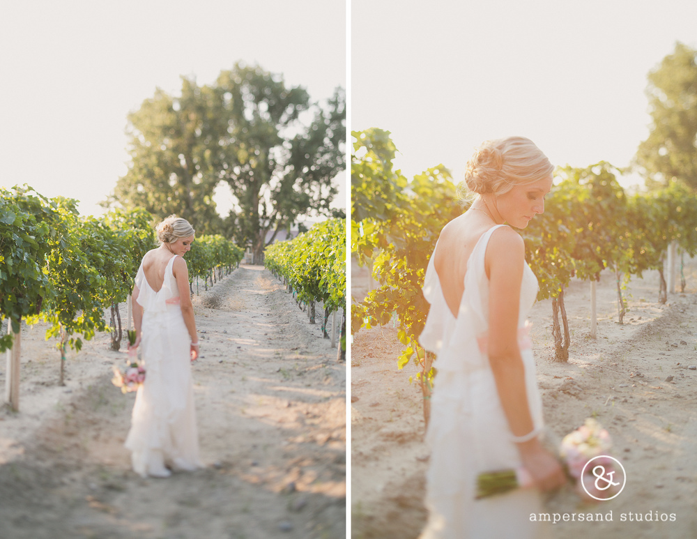 Fox_Canyon_Vineyards_nampa_idaho_wedding_venue_flamingo-130