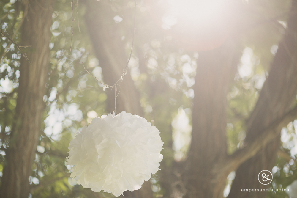 Wild_Heart_Springs_Wedding_Photographer_Idaho-121