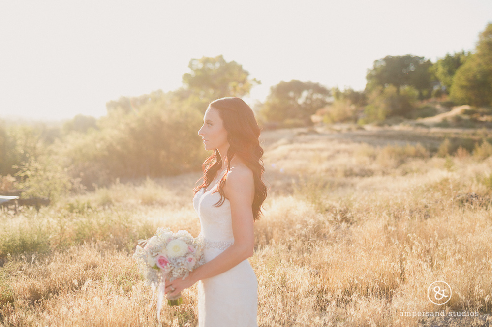 Wild_Heart_Springs_Wedding_Photographer_Idaho-139