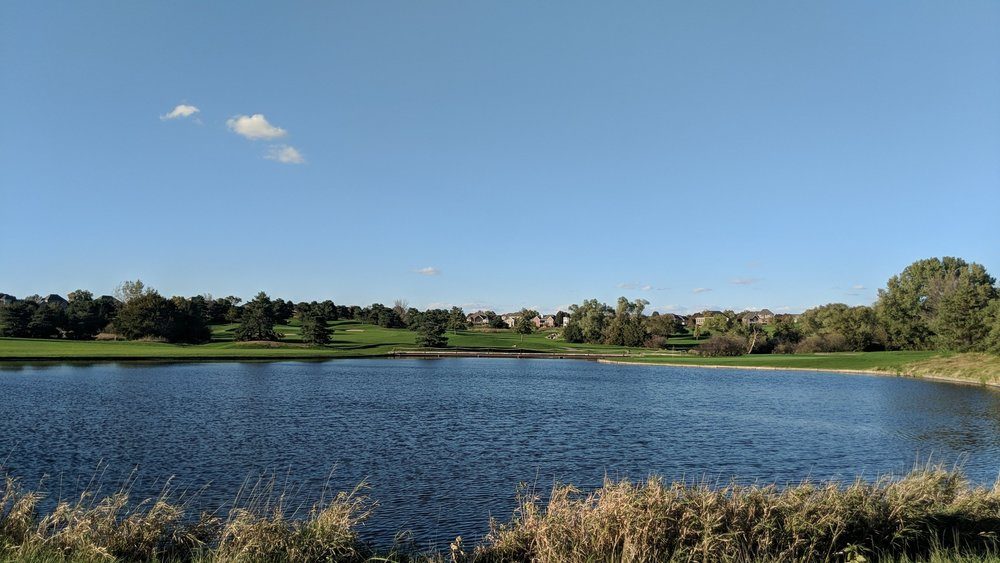 Pond on 6.jpg