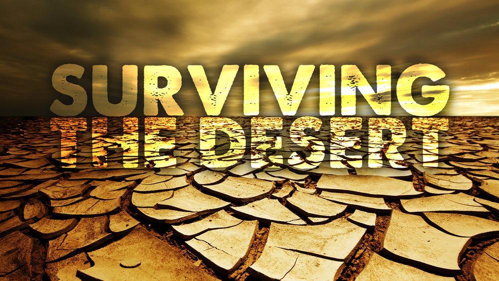 SurvivingTheDesert.jpg