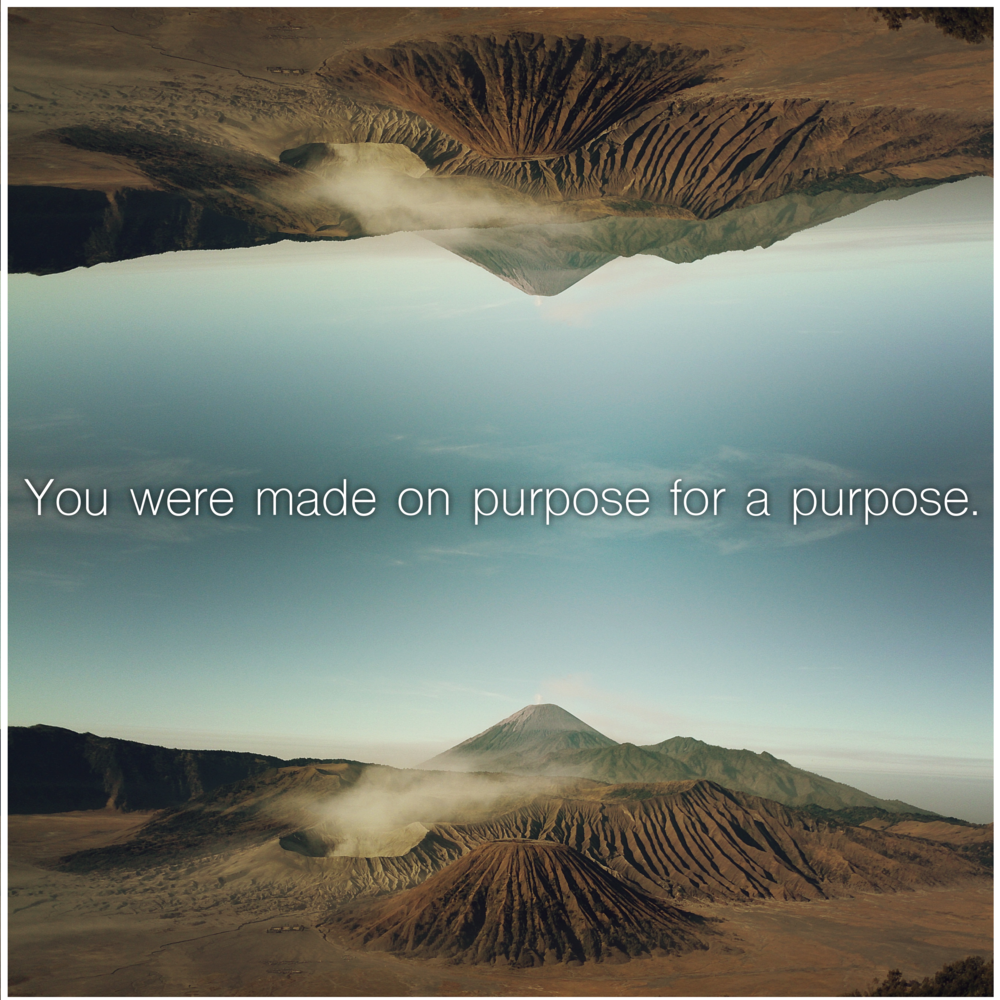 Made on Purpose.png