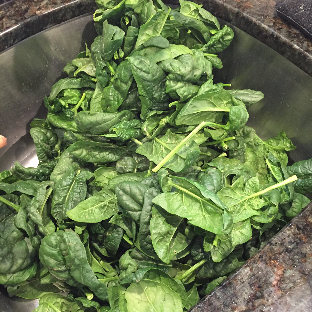 pounds of spinach