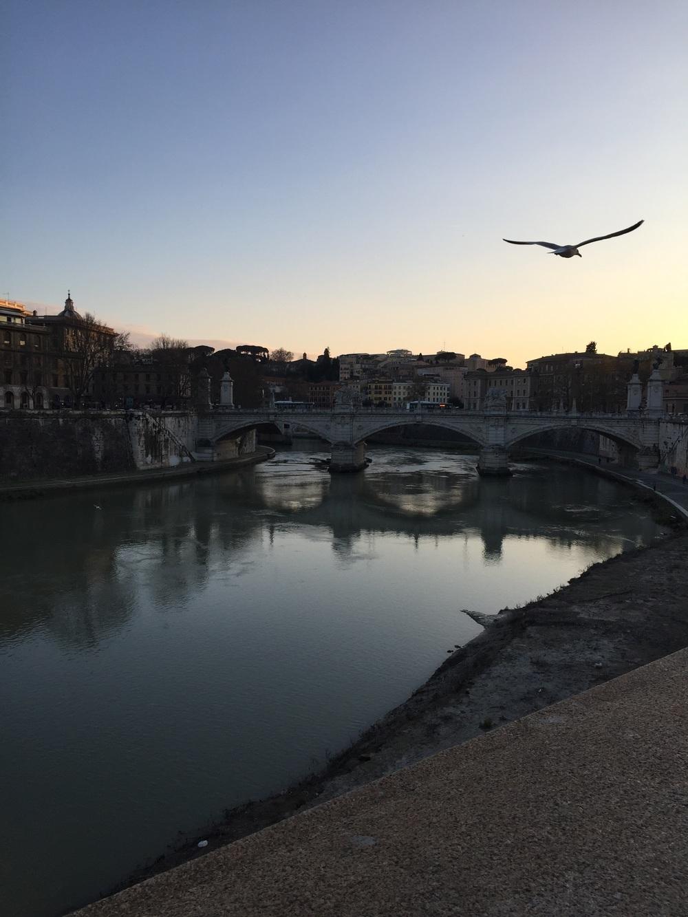 Il rio Tevere, cerca del Stato della Città del Vaticano)