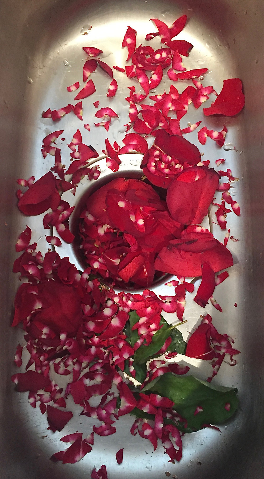rose petal trimmings; you want just the velvety red parts!