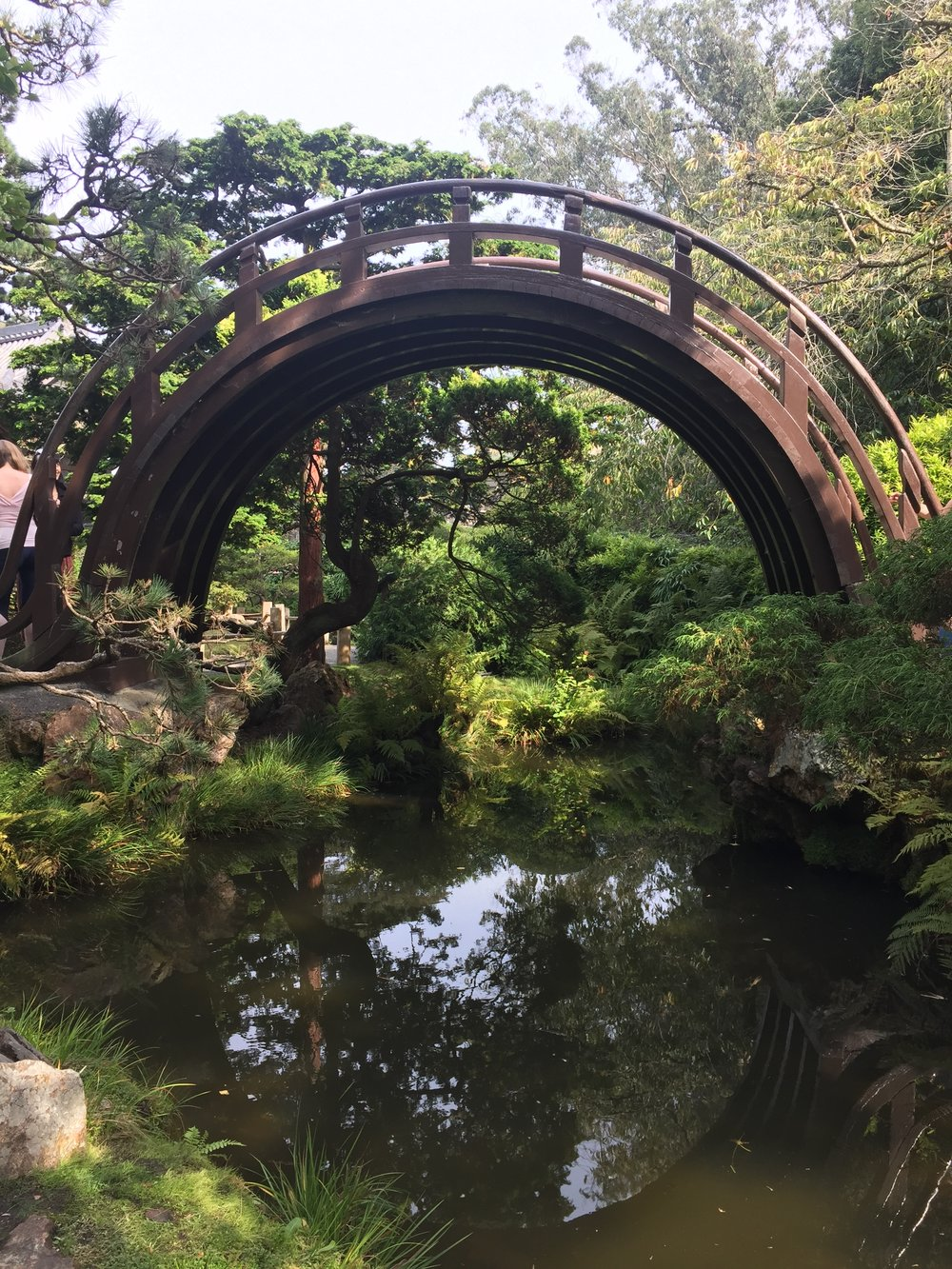 the drum bridge in the garden