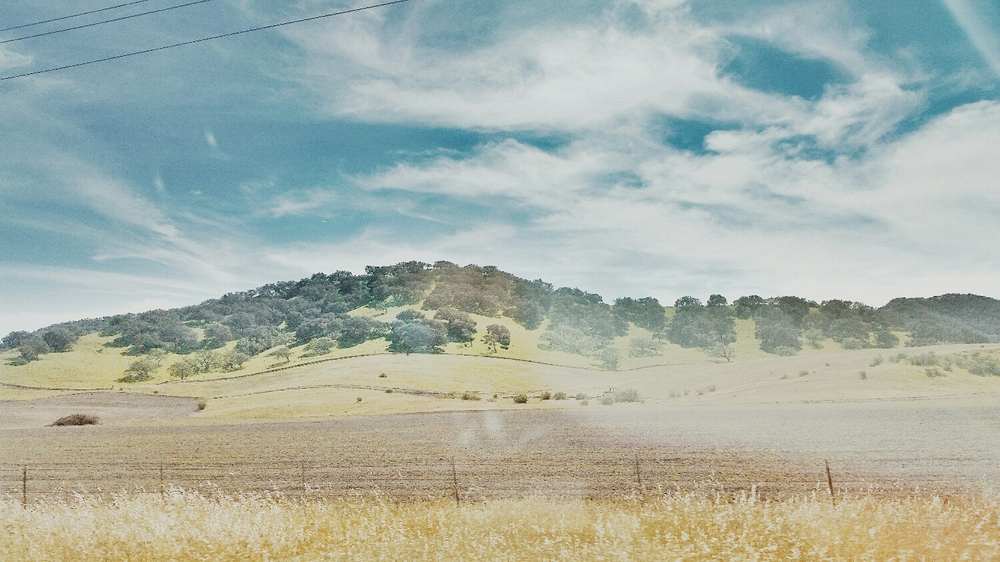 The Santa Ynez Valley shot from a moving vehicle on highway 101.