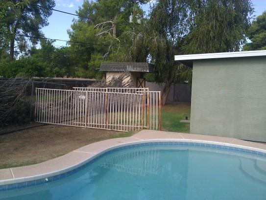 backyard6