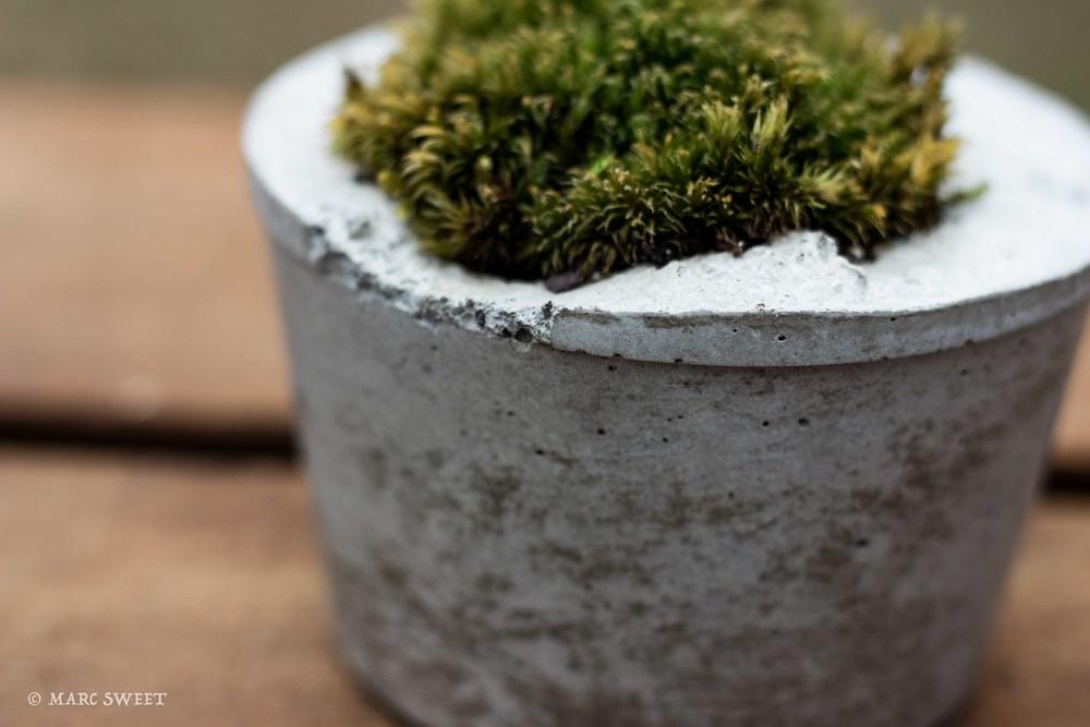 Short planter detail