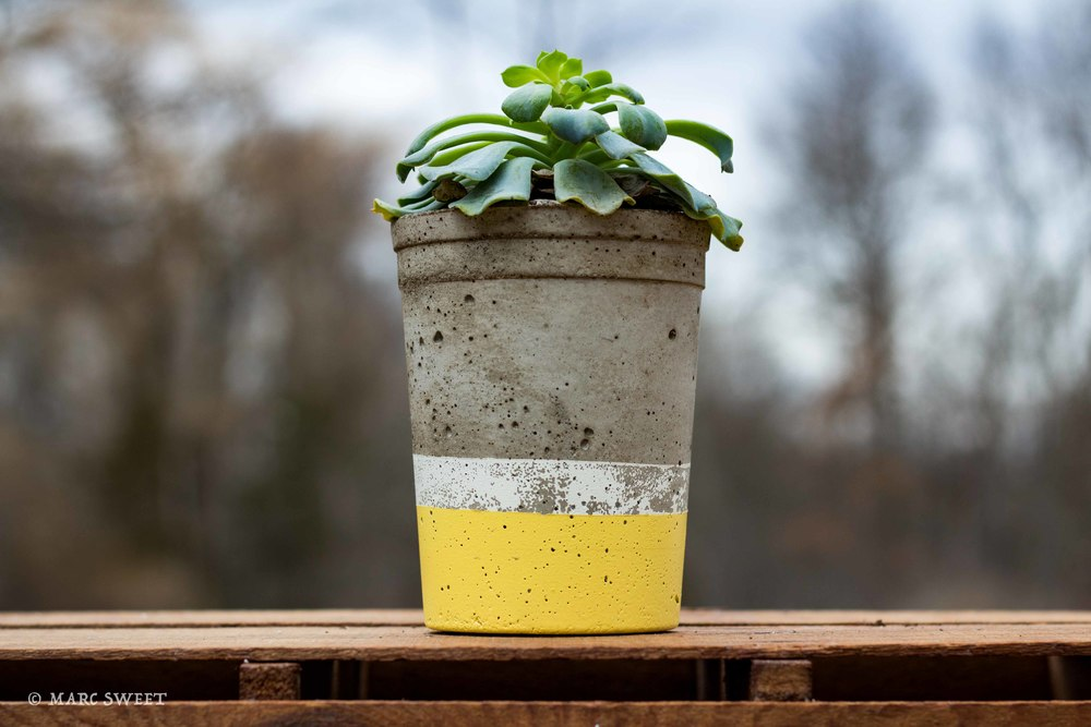 Tall planter 1