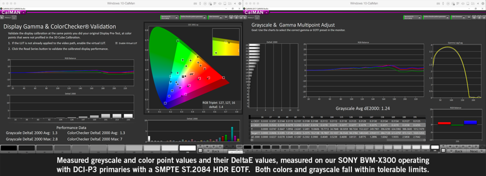 Calibration results showing DeltaE values for greyscale and color points
