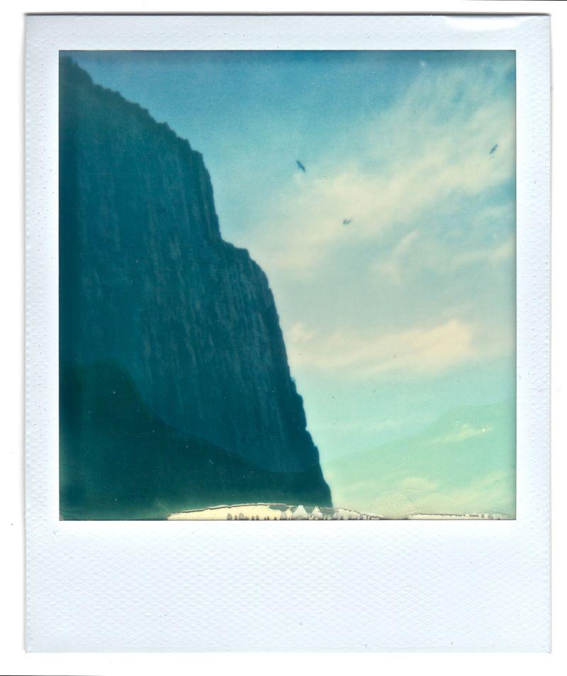 Stykkishólmur cliffs and birds