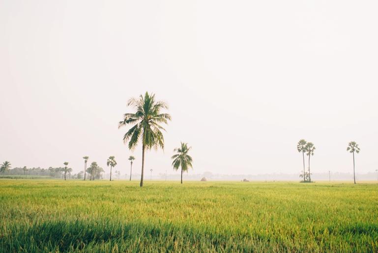 INDIA_kristawelch-00156