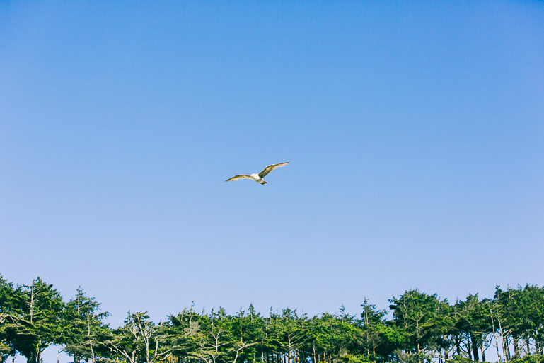 seabrook beach wedding-0389